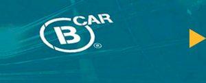 bcar wordpress bespoke