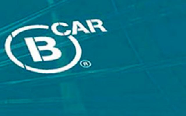 bcar wordpress bespoke