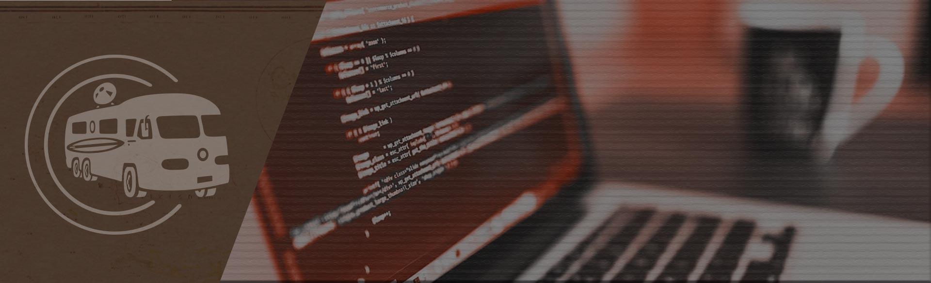 advanced wordpress developers